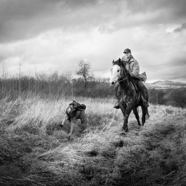 """""""Will Hunt. Horse Breaker"""" stock image"""