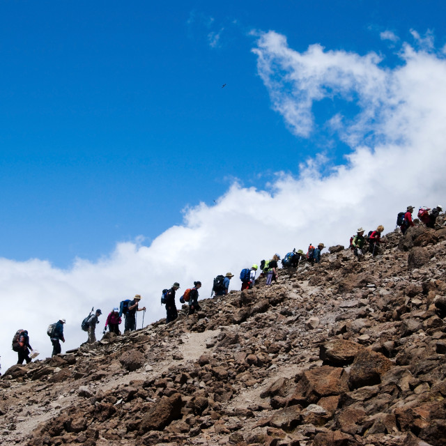 """Trekking up mt Kilimanjaro"" stock image"