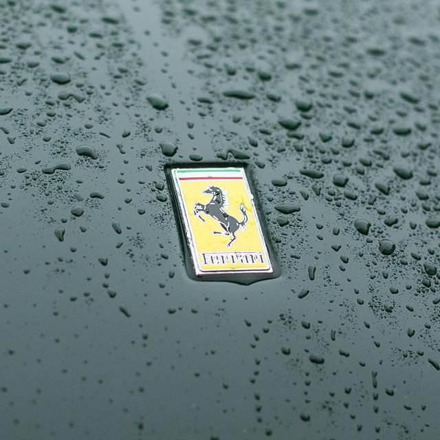 """Ferrari Badge #1"" stock image"