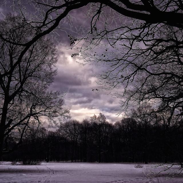 """Darkness Landscape"" stock image"