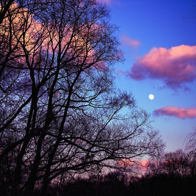 """Dramatic Full Moon Sky"" stock image"