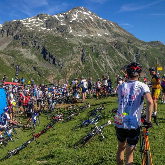 """La Marmotte Sportive"" stock image"