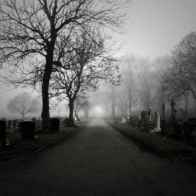 """Misty Cemetery Path"" stock image"