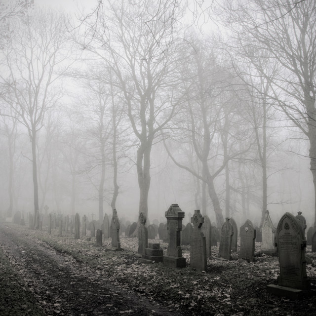"""A Walk Among the Tombstones"" stock image"