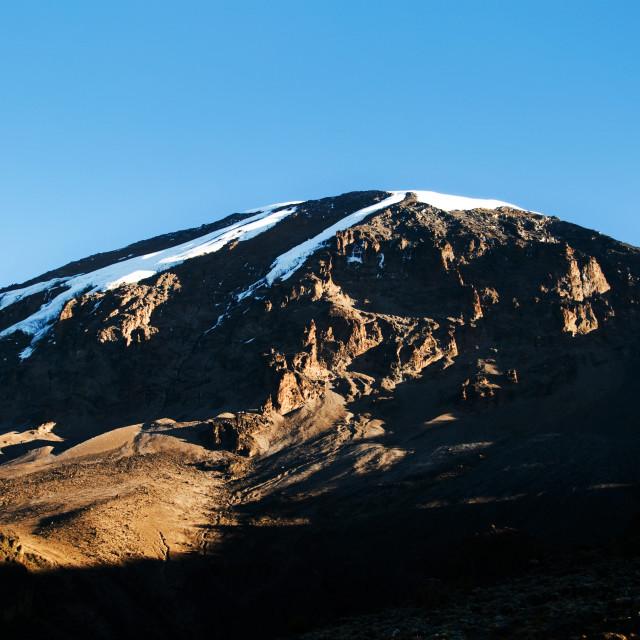"""Mt Kilimanjaro"" stock image"