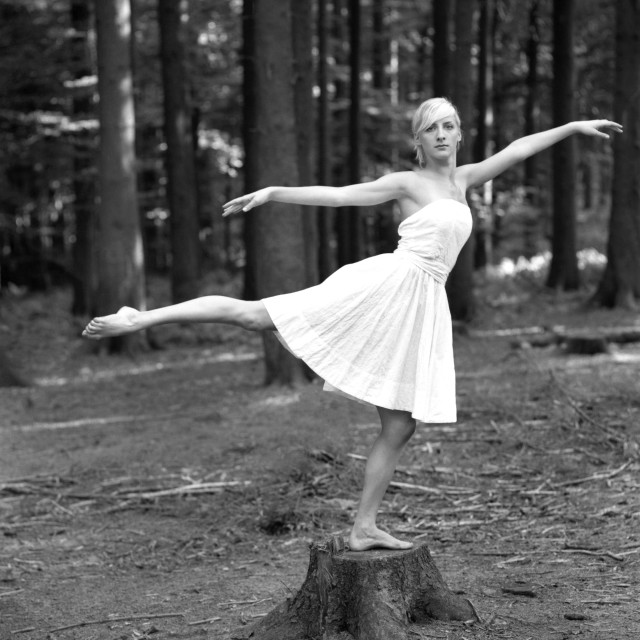 """""""Dancer In The Forest"""" stock image"""