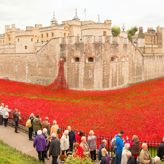 """Poppy Ocean Tower of London Panorama"" stock image"