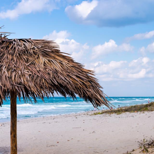 """Beach and Umbrella"" stock image"