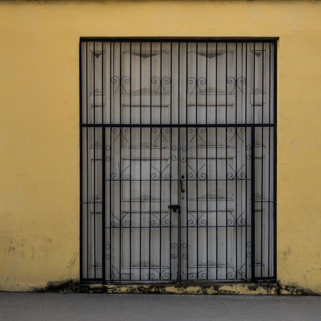 """""""Double door / gate"""" stock image"""