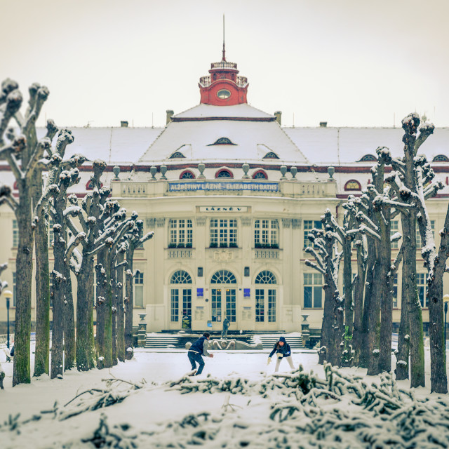 """""""Snowball fight in Karlovy Vary, Czech Republic"""" stock image"""