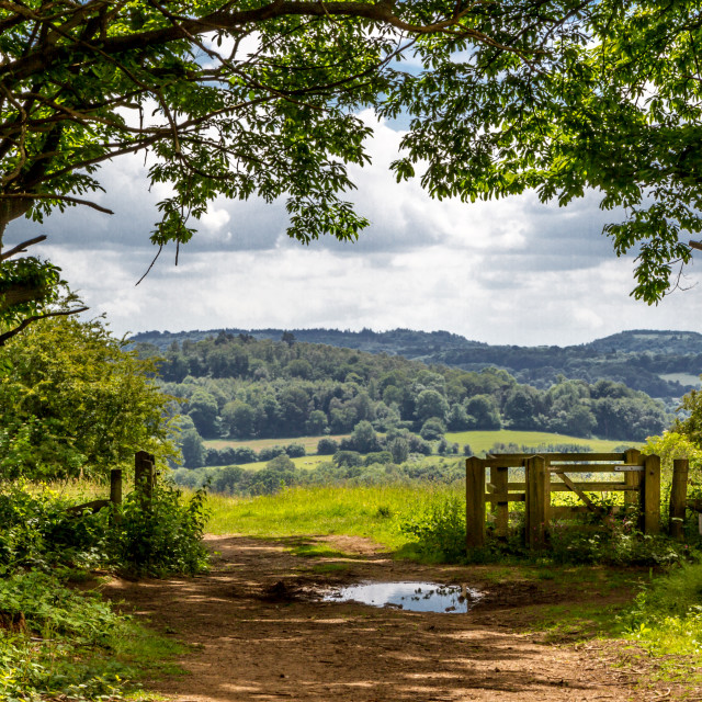 """The Chantries, Surrey"" stock image"