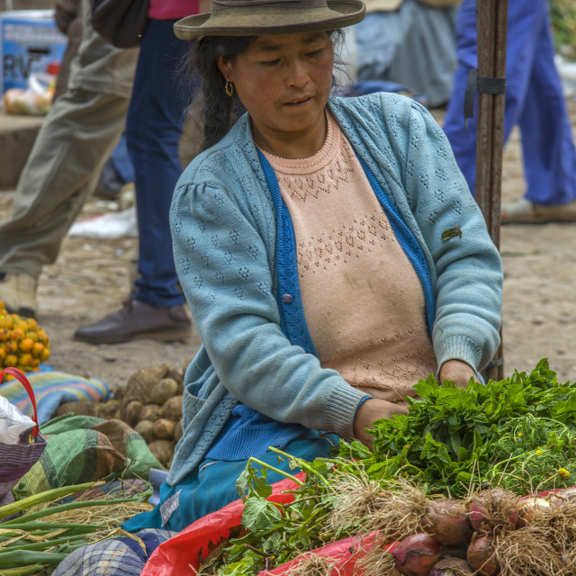 """Quechua woman selling vegetables on market"" stock image"