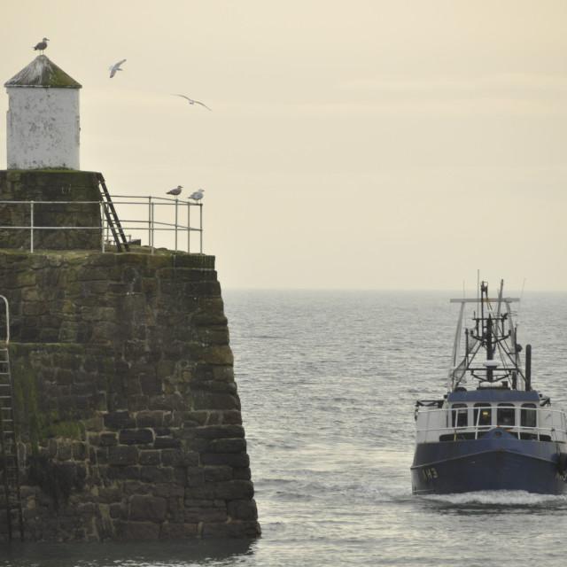 """""""Inshore Fisheries Scotland"""" stock image"""