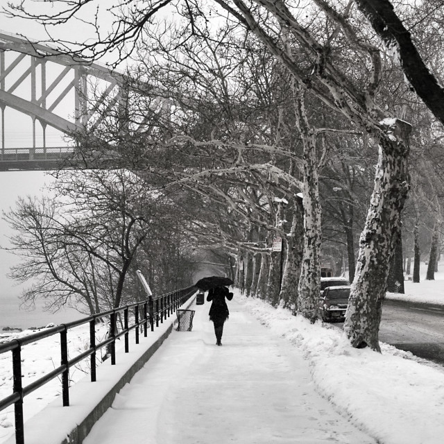 """Winter Walk"" stock image"