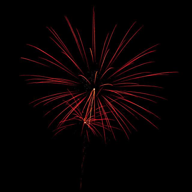 """""""Flower Fireworks"""" stock image"""