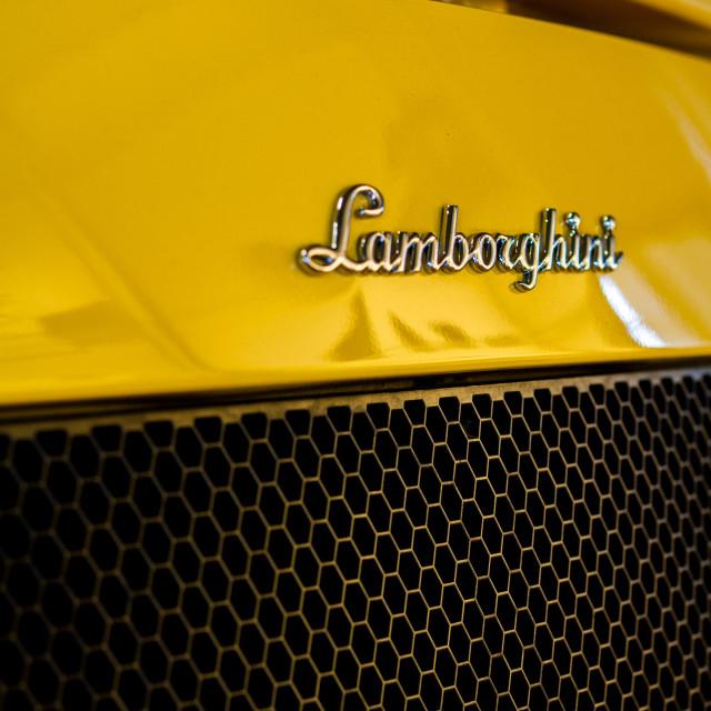 """Lambo"" stock image"