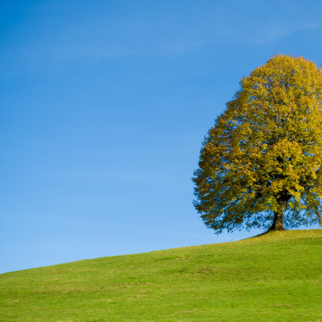 """""""Up the hill"""" stock image"""