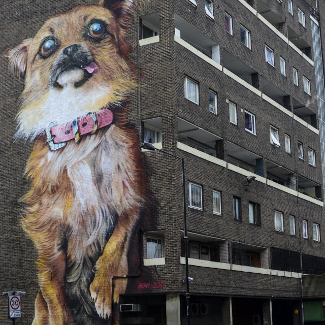 """""""Dog art"""" stock image"""