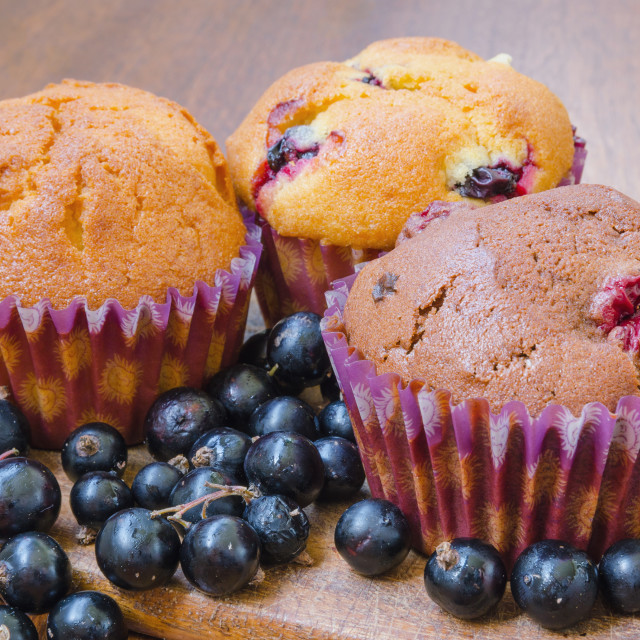 """Muffins With Blackcurrant"" stock image"