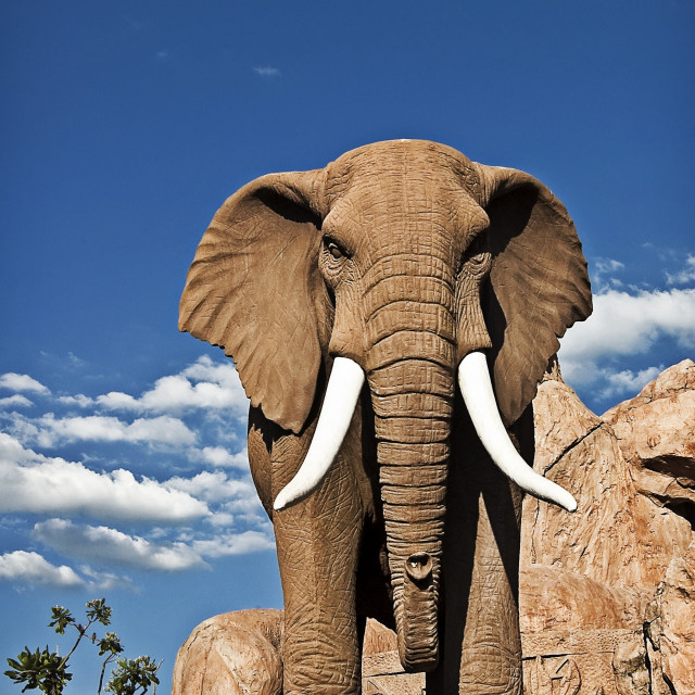 """DSC_6824- Elephant statue"" stock image"