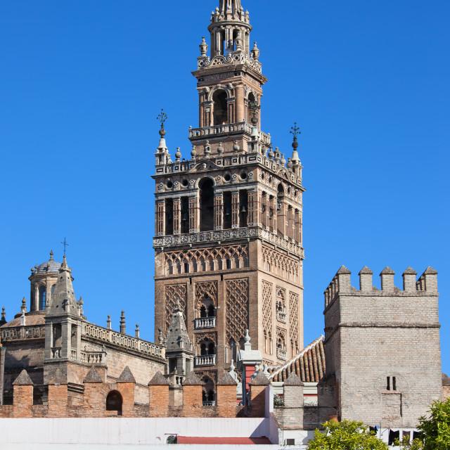 """Giralda Tower in Seville"" stock image"