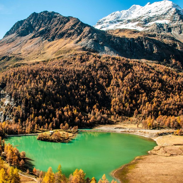 """""""A lake in the Swiss Alps"""" stock image"""