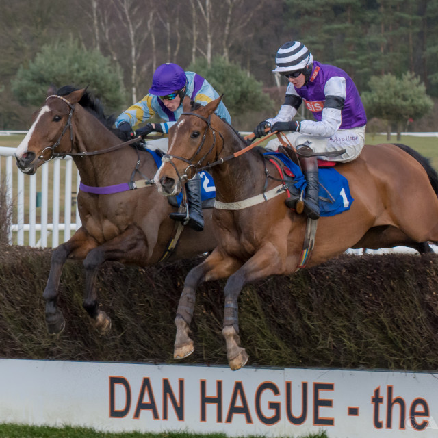 """""""Horse racing action from Market Rasen"""" stock image"""