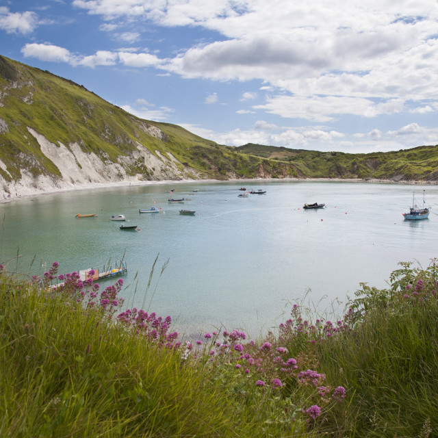 """Lulworth cove, Dorset"" stock image"