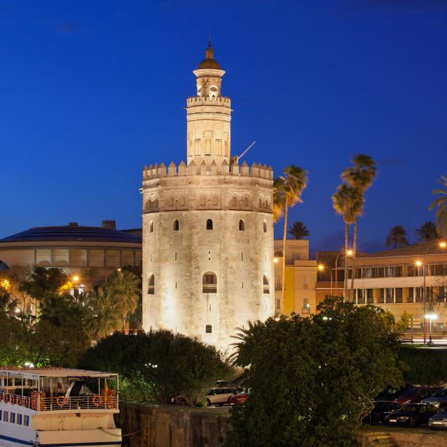 """Torre del Oro at Night in Seville"" stock image"