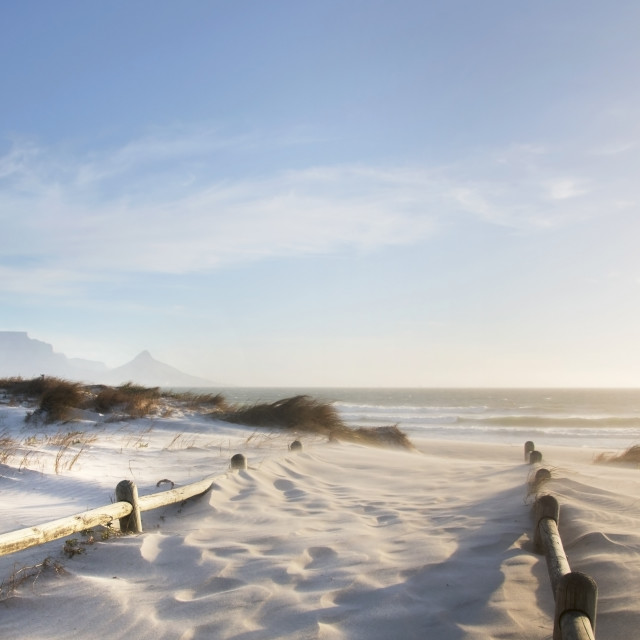 """""""Golden Dreamy Beaches of Cape Town"""" stock image"""