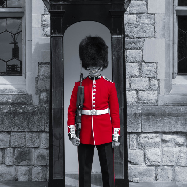 """Queen's Guard"" stock image"
