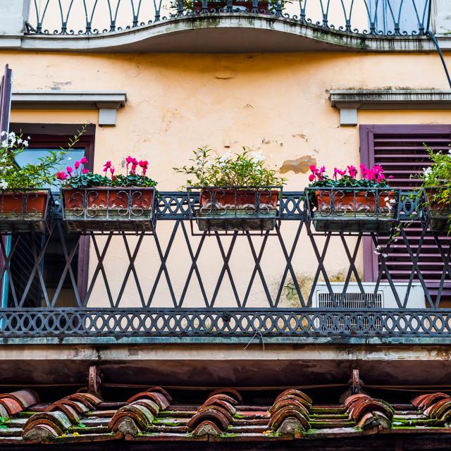 """Florence Balcony"" stock image"