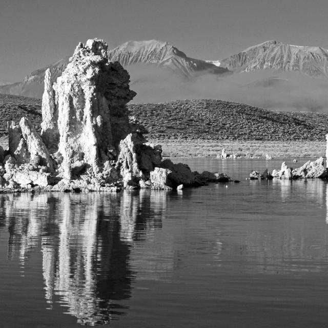 """""""Tufa Formations at Mono lake."""" stock image"""