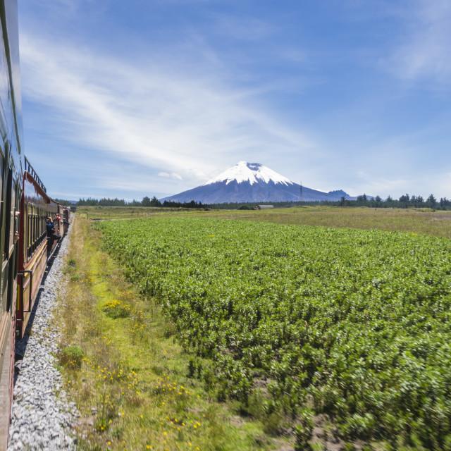 """""""Tren de los Volcanes Cotopaxi"""" stock image"""
