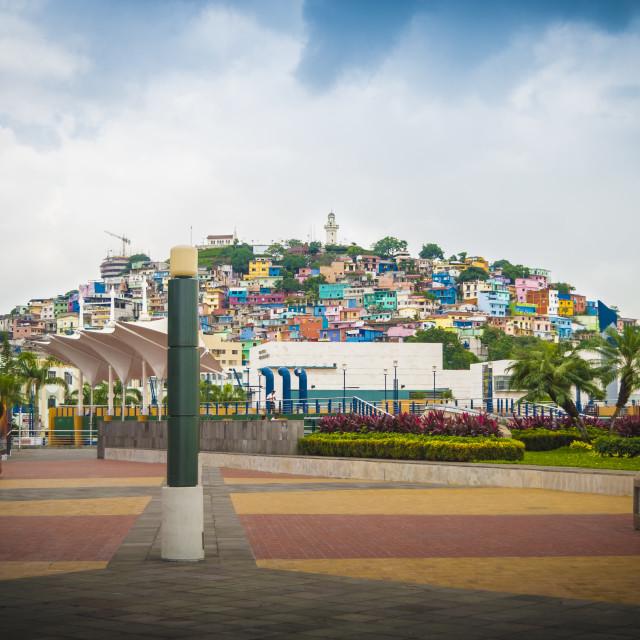 """Las Penias in Guayaquil"" stock image"
