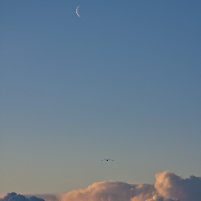 """""""Moon and clouds"""" stock image"""