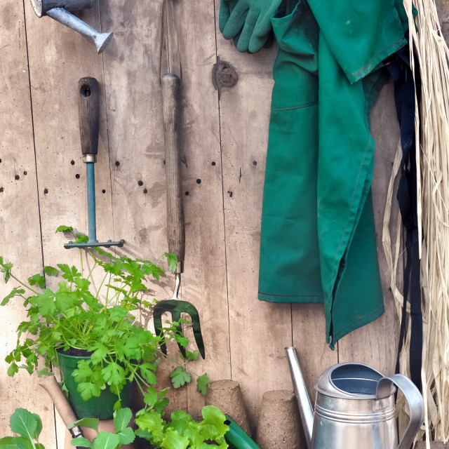 """rustic gardening"" stock image"