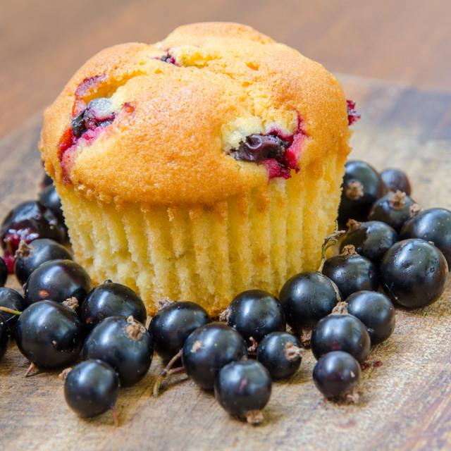 """""""Lemon Muffin With Cherries"""" stock image"""