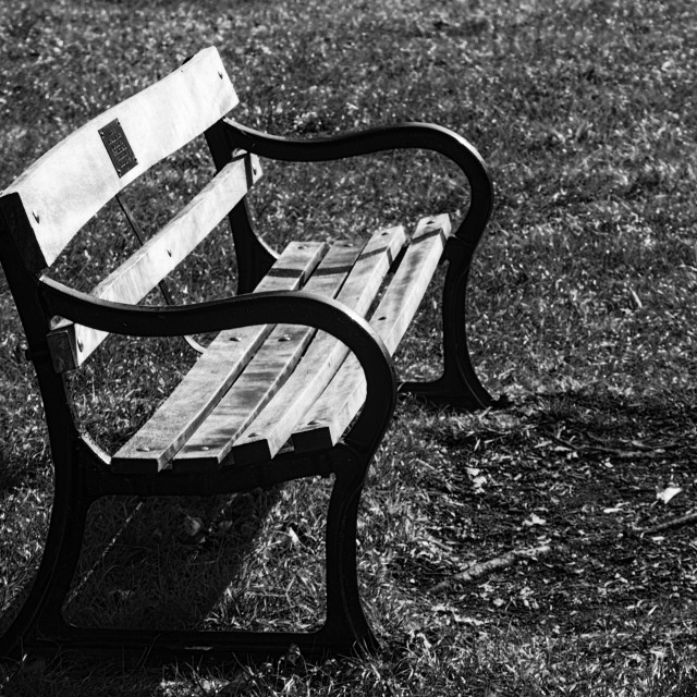 """Park Bench"" stock image"