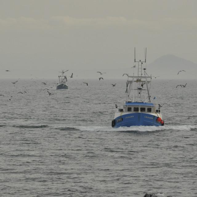 """Trawlers Pittenweem Fife Scotland UK"" stock image"