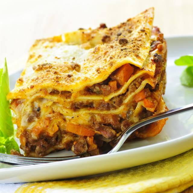 """Plate of lasagna"" stock image"
