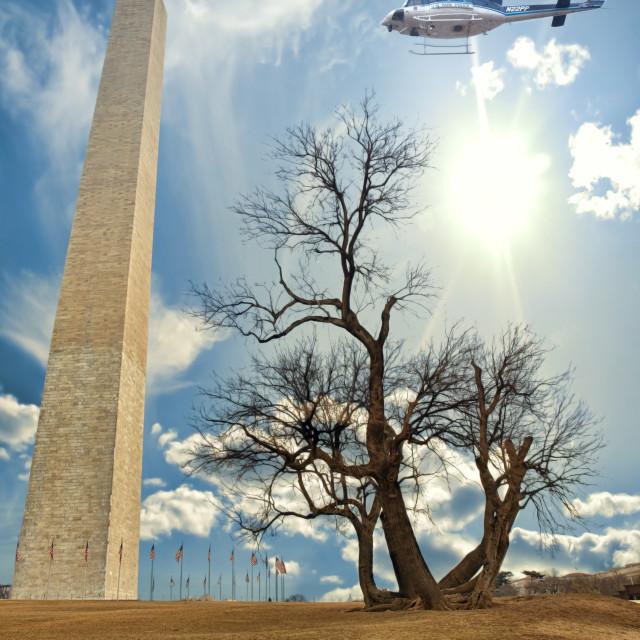 """""""The Washington Monument"""" stock image"""