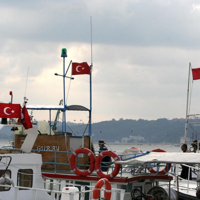 """Turkish Flags on the Bosphorus"" stock image"