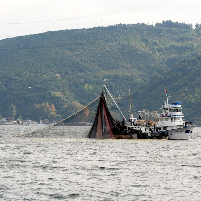 """""""Trawling for fish in the Bosphorus"""" stock image"""