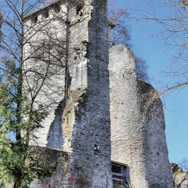 """Sonnenberg Castle"" stock image"