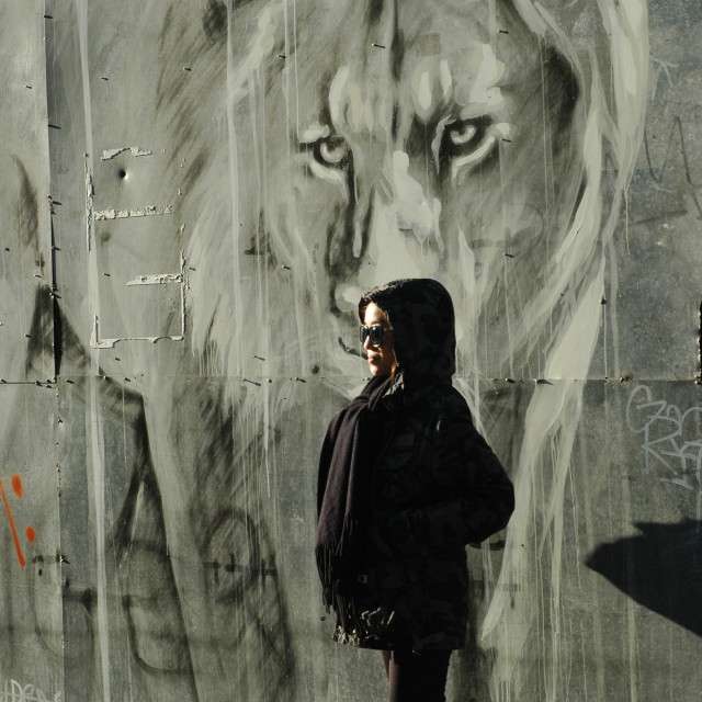 """Lion pose"" stock image"