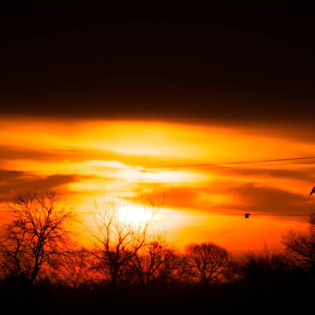 """""""Fire Sunrise"""" stock image"""