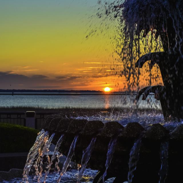 """""""Charleston Sunrise"""" stock image"""