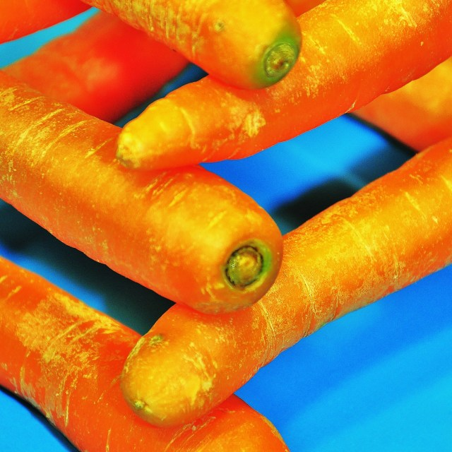 """Stack of Carrots"" stock image"