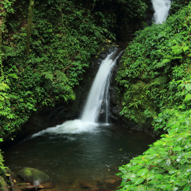 """Waterfall, Monteverde Biological Reserve, Costa Rica."" stock image"